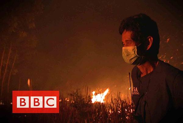 BBC : Peatfires